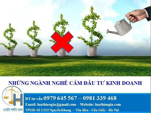 Những ngành, nghề cấm đầu tư kinh doanh tại Việt Nam