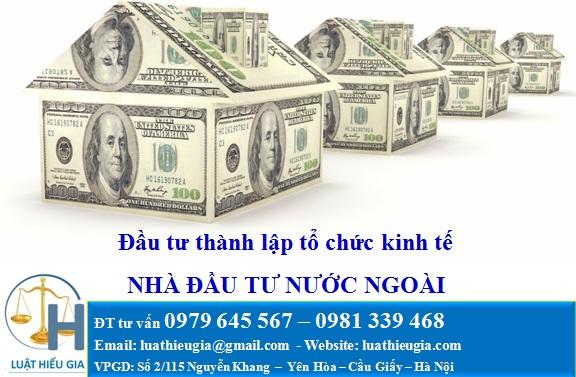 Nhà đầu tư nước ngoài thành lập tổ chức kinh tế tại Việt Nam