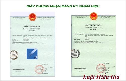 Đăng ký bảo hộ lgo thương hiệu tại Hà Nội