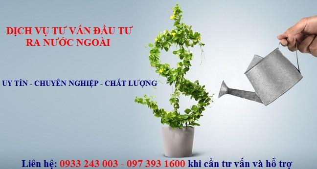 Dịch vụ đầu tư ra nước ngoài
