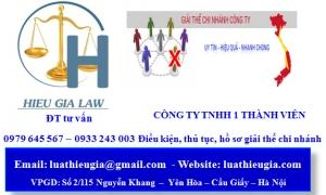 Chấm dứt hoạt động chi nhánh công ty TNHH 1 thành viên