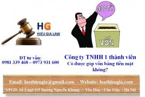 Công ty TNHH 1 thành viên có được góp vốn bằng tiền mặt không?