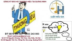 Đăng ký bảo hộ thương hiệu tại Quảng Ninh