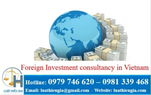 Foreign investment consultancy in VietNam