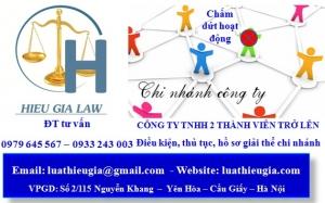 Chấm dứt hoạt động chi nhánh công ty TNHH hai thành viên trở lên