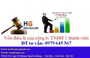Góp vốn công ty TNHH 1 thành viên