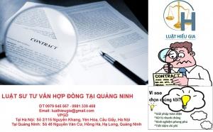 Luật sư tư vấn hợp đồng tại Quảng Ninh