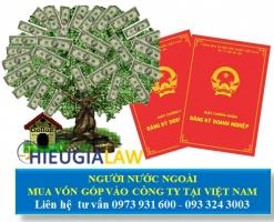 Người Nước Ngoài Mua Vốn Góp Vào Công Ty Tại Việt Nam