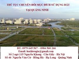 Thủ tục chuyển đổi mục đích sử dụng đất tại Quảng Ninh